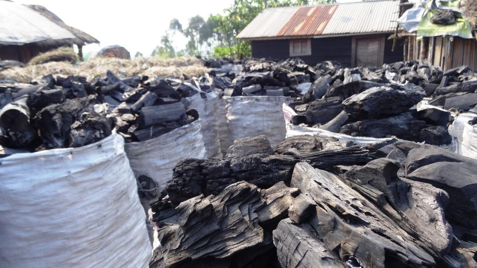 Der Holzkohlemarkt in Karenga – es ist Afrikas Schwarzes Gold.