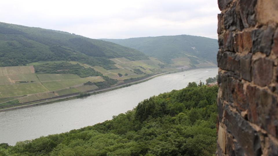 Blick auf den Rhein.