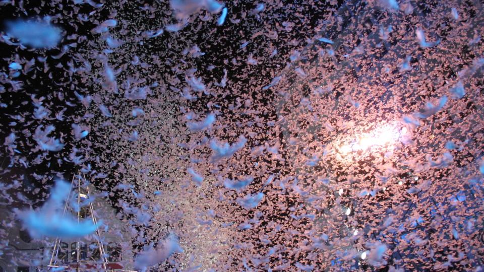 Beim Schlussakkord gegen 20.30 Uhr regnet es Daunen auf die tausenden frierenden Zuschauer.